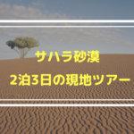 サハラ砂漠現地ツアー